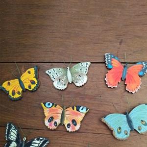 Tavaszi pillangók érkeztek!